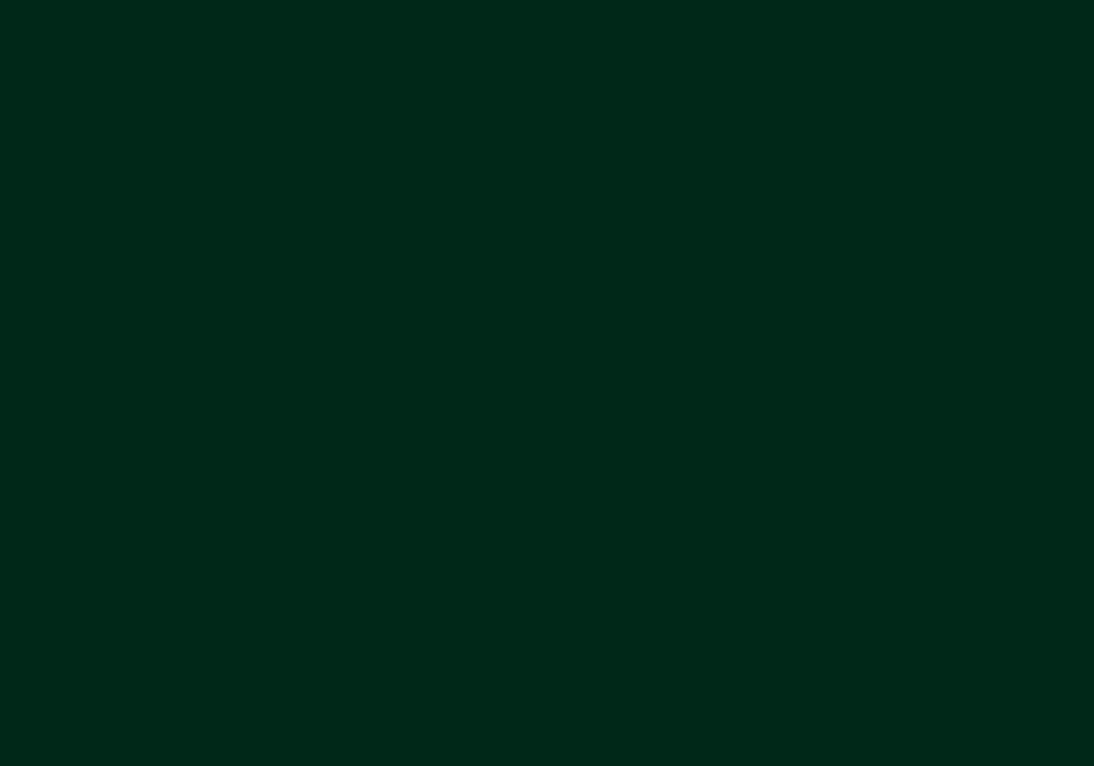 RAL 6005 zielony