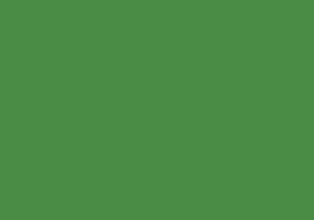 RAL 6021 zielony