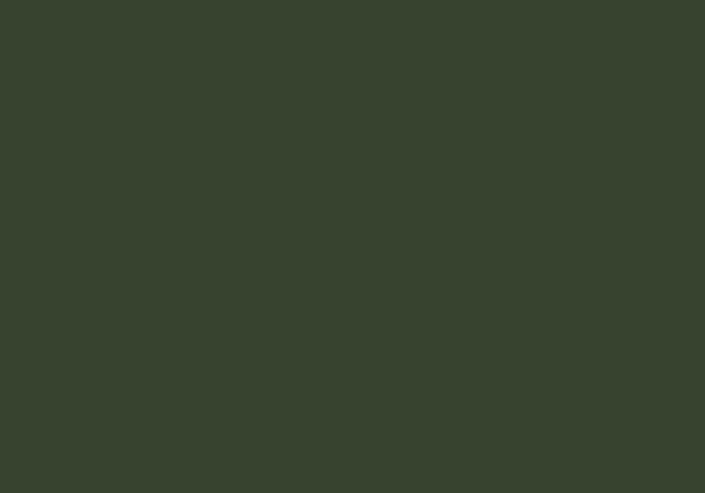 RAL 6020 ciemna zieleń