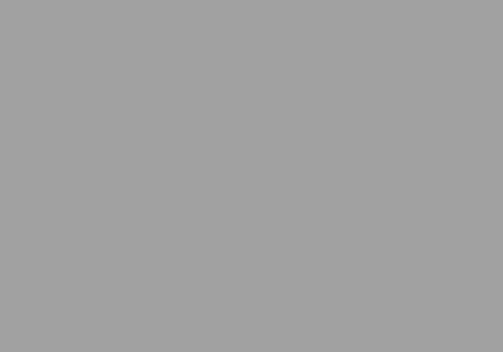 RAL 9006 srebrny aluminiowy