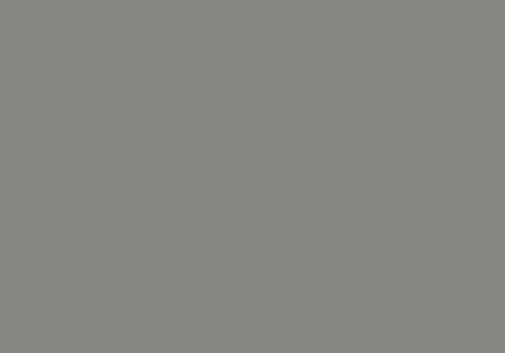 RAL 9007 ciemny srebrny